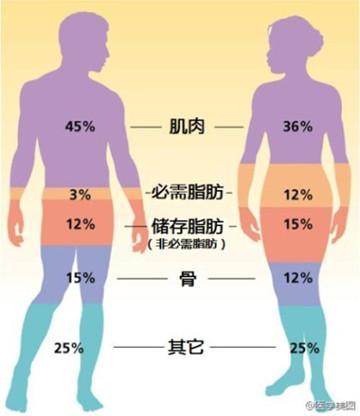 體重165身高標準體重_身高體重bmi_嬰兒體重身高標準